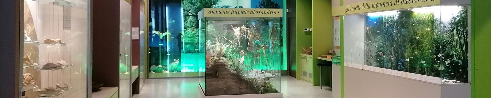 Immagine di testata: scorcio interno del Teatro delle Scienze